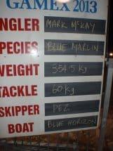 Blue marlin11